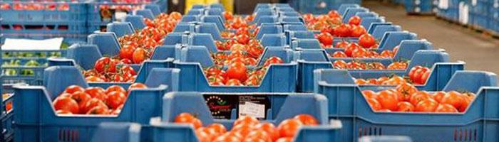 Importación de alimentos a los Estados Unidos de América.